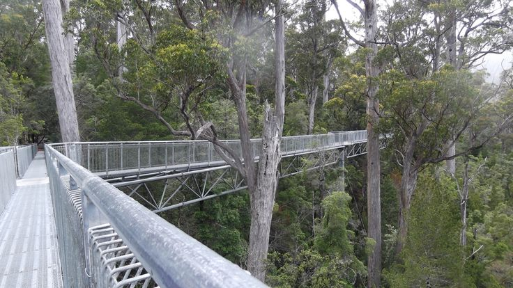 Tahune Airwalk.