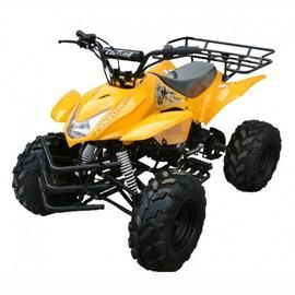 Atv Connection offers #125ccGasATV on heavy discount price with free shipping in USA.  https://www.atvconnectionusa.com/collections/125cc-gas-atv