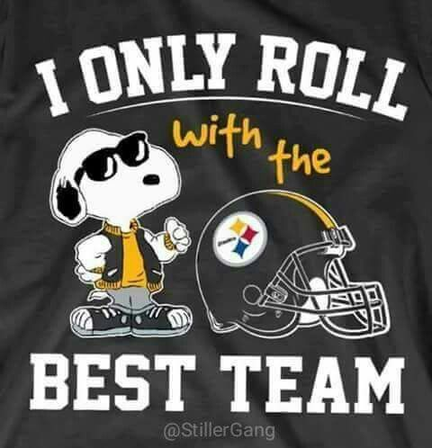 18 Best Crafty Steelers Ideas Images On Pinterest