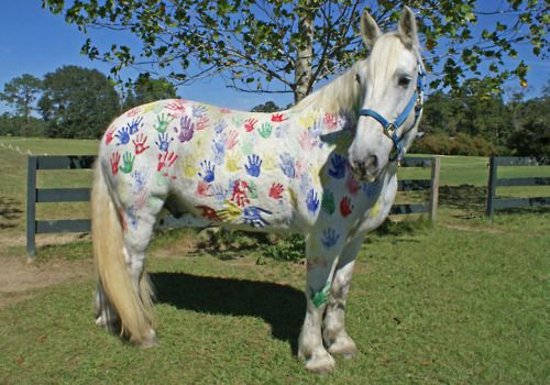 We can paint our white horses   Horse Camp ideas ...