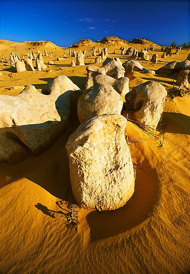 The Pinnacles Desert, Nambung National Park, Western Australia, Australia. 162 km NW of Perth