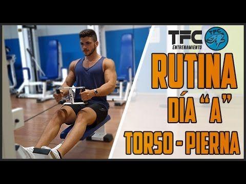 ¿Por qué deberías realizar una rutina torso-pierna? | Entrenamiento
