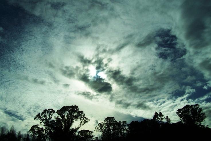 Skyscape. Valdivia, Chile. Photograph by Wayne Visser. Copyright 2010.