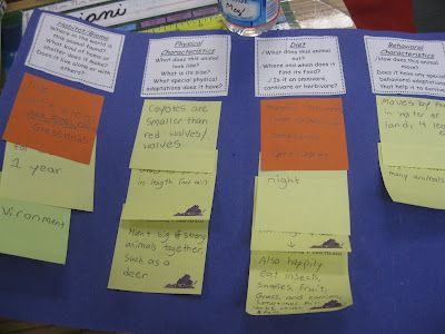 Research report foldable.