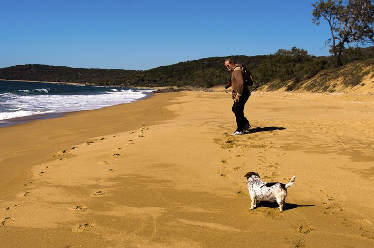 Our current favourite Agnes Water beach. The Little Dog did have a few stand off moments during our 2 hour walk along the beach.