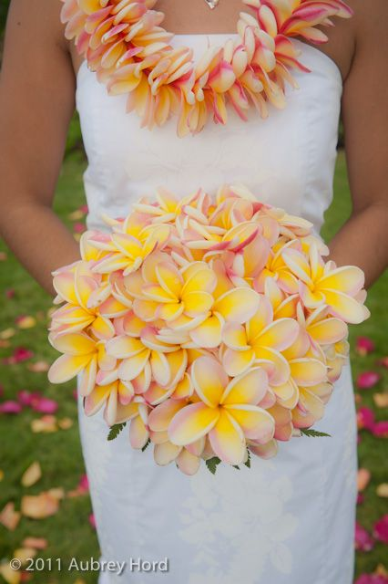 plumeria:) Absolutely Gorgeous!!! Just like the white rose and orchid boquet. Stick a few of these in there and call it dandy :)