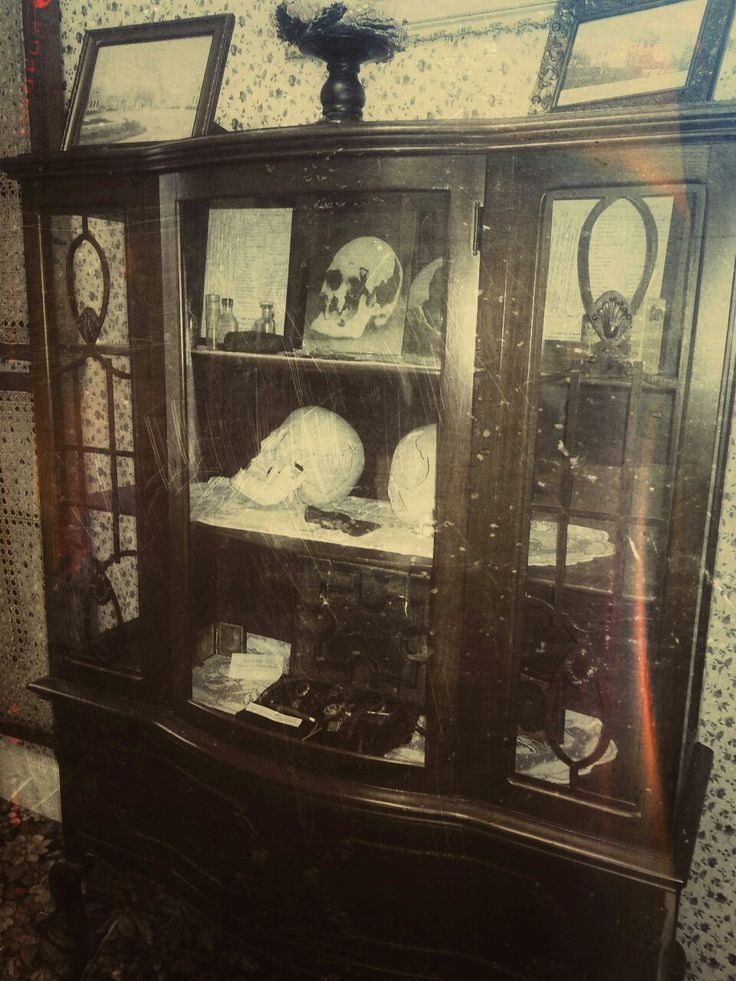Display Case of the Lizzie Borden House, featuring the two casts made from the skulls of Andrew and Abigail Borden.