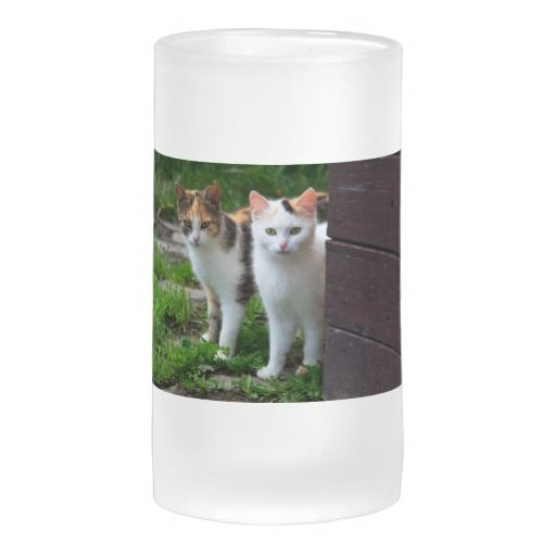 Your Custom 16 oz Frosted Glass Mug