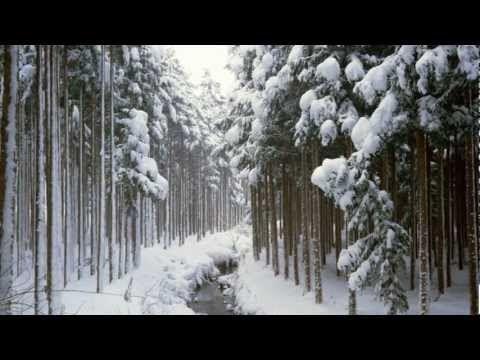 Клип Fiona Joy Hawkins - Winter Cold - 876 роликов. Поиск Mail.Ru