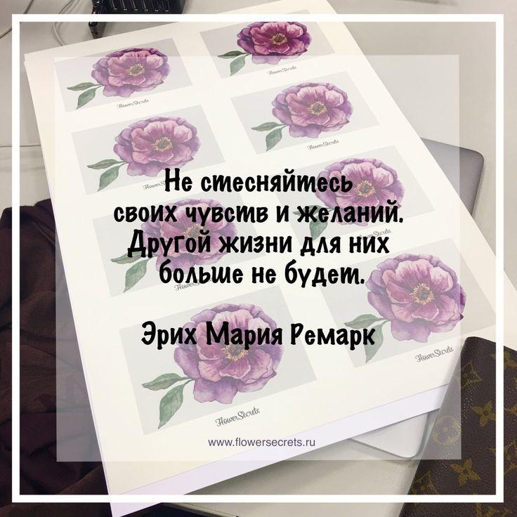 Цитаты Цитата Вдохновение НовыйГод Афоризмы FlowerSecrets Успех Мотивация