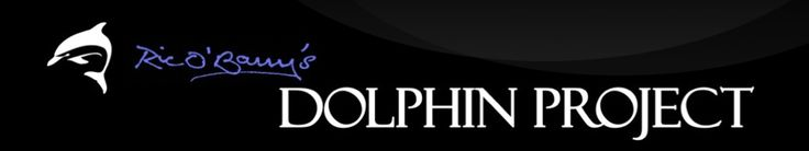 It is very sad what is happening to dolphins in captivity; please support the Dolphin Project to help stop the cruelty