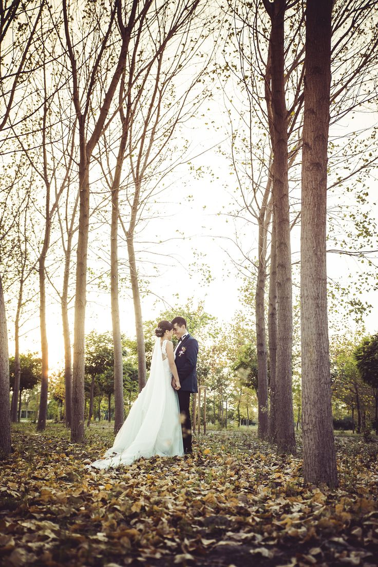 #intothewoods #wedding #photography #sunset #cream #happy