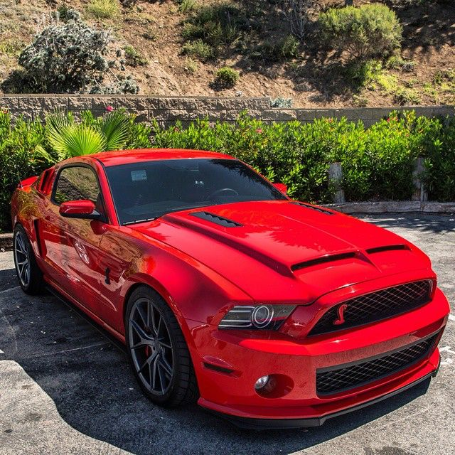 Red Rocket GT500 Freshly Uploaded To www.MadWhips.com Photo by @t_s_photography