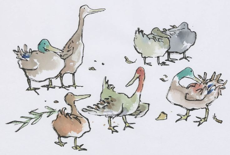 Över 1 000 bilder om Quirk: Inspired by Quentin Blake's Animals på ...