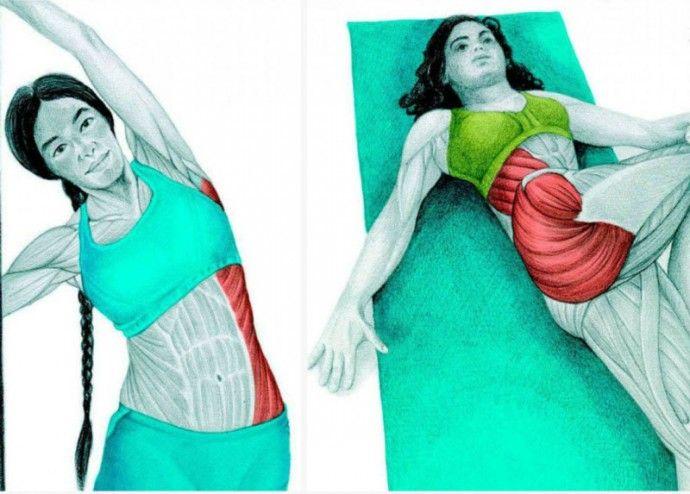 Супер упражнения для боков и талии тренируем косые мышцы | Colors.life