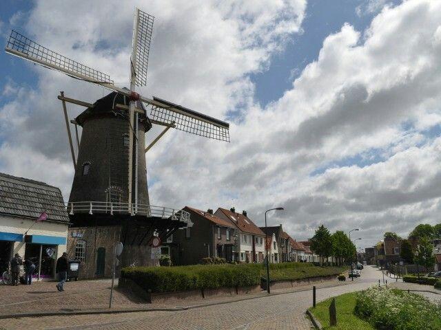 Molen de korenbloem Sommelsdijk