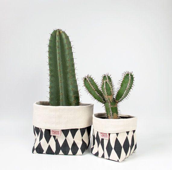 Inspiração do dia: plantinhas em casa