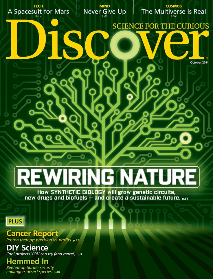 Discover Magazine: The latest in science and technology news, blogs and articles - rainforest