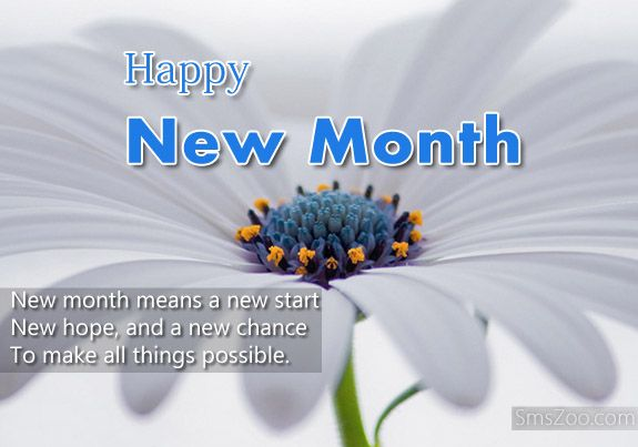 Image result for happy new month june