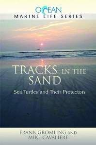 'Tracks' teaches about sea turtles and more