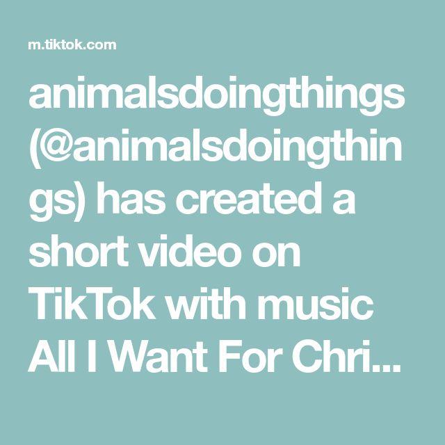 Animalsdoingthings Animalsdoingthings Has Created A Short Video