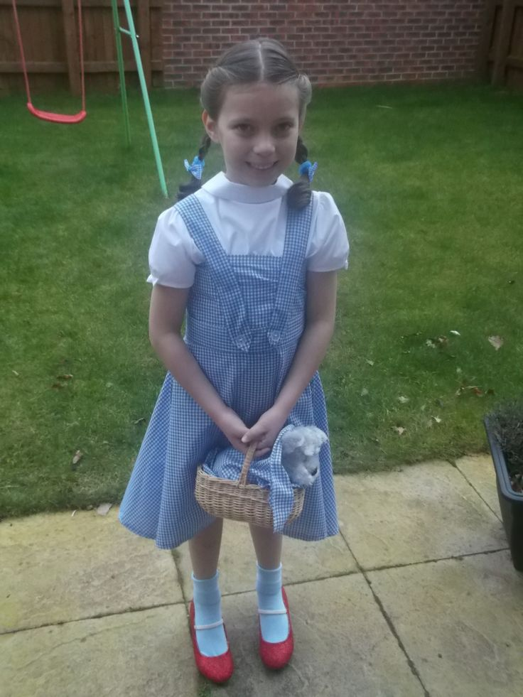 Homemade Dorothy from wizard of Oz. Cheap material and easy accessories make a cute dress up outfit perfect for world book day.