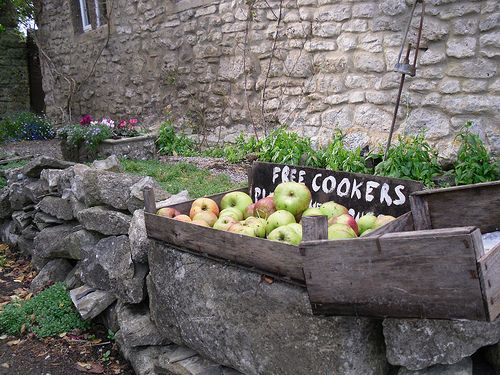 FREE COOKERS, Shepton Mallet by Somerset Bloke on Flickr
