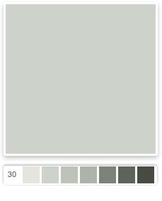 Sherwin williams sea salt sw 6204 color palettes for Lrv paint color chart