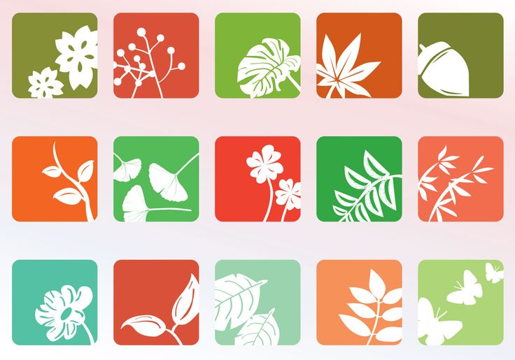 Fifteen nature icons that have leaves of ferns, ginkgo, flowers, butterflies, maple leaves, etc. these icons have a special frame that does show characteristics of each of these with the approach.