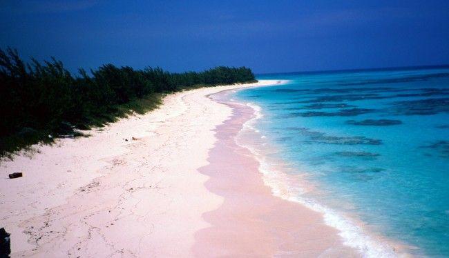 Coral Pink Sand Beach, la plage de sable rose de Harbour Island, Bahamas