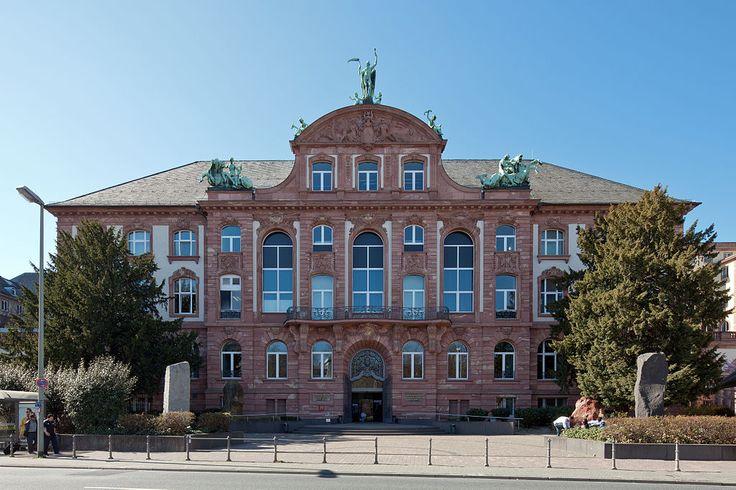 The Naturmuseum Senckenberg in Frankfurt am Main