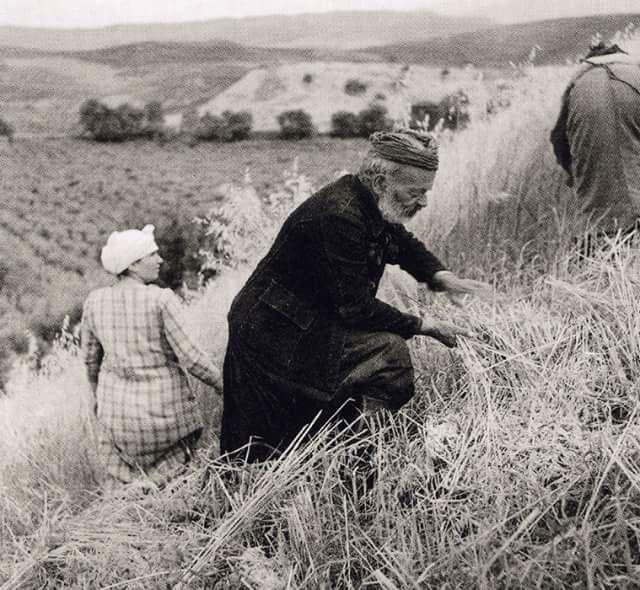 ΚΡΗΤΗ - 1939   - ΘΕΡΙΣΤΗΣ - ΦΩΤΟΓΡΑΦΙΑ ΕΛΛΗ ΣΟΥΓΙΟΥΛΤΖΟΓΛΟΥ ΣΕΡΑ'Ι΄ΔΑΡΗ