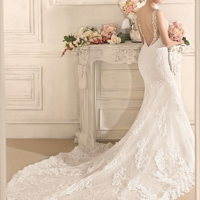 Wow Wow Wow! Stunning open back, amazing train, beautiful lace and that cut... luxurious, sophisticated and sexy