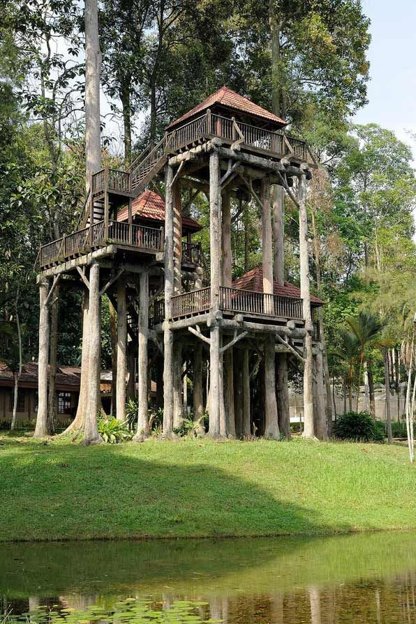 The 10 best Tree Houses images on Pinterest | Tree houses ...
