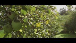 Vídeos de Where is Asturias on Vimeo