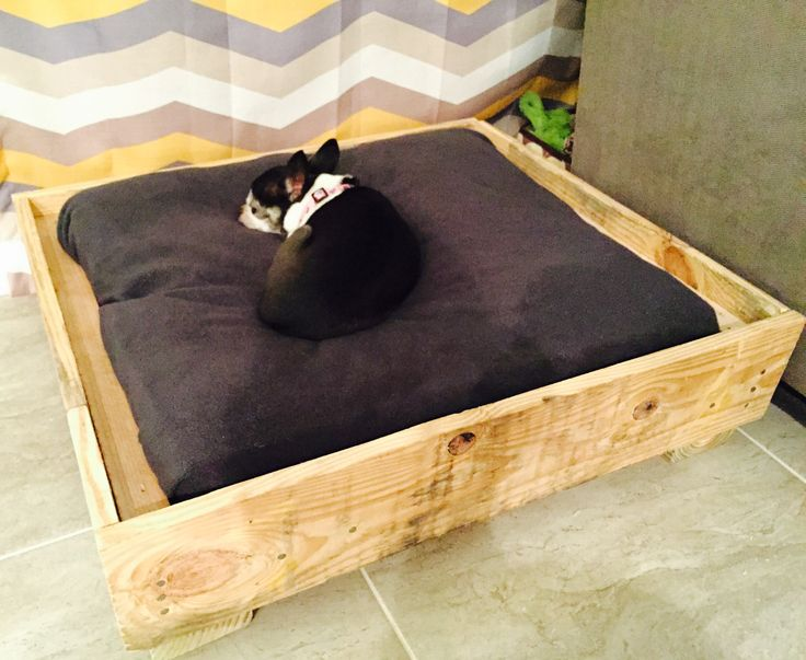 """Just finished this an hour ago!  Used one small pallet and one large pallet to create a raised dog bed.  24""""x24"""" throw pillow covered with an ultra soft blanket.  This way the blanket can be washed and you never need to worry about the pillow.  Finished piece will be navy blue with white lettering and a white anchor."""