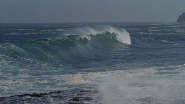 Presentación de Paisajes Submarinos. Un mundo oculto bajo el mar de las islas Canarias. De Rafa Herrero Massieu