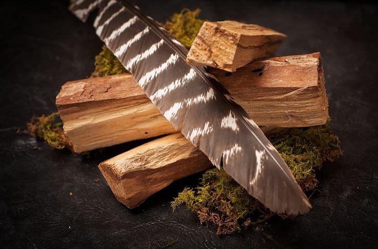 Benefits of Introducing Palo Santo, The Sacred Wood, Into Your Life