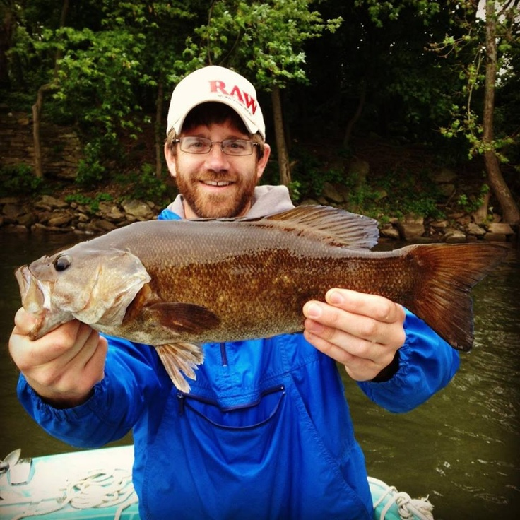 78 best smallmouth bass fishing images on pinterest bass for Susquehanna river fishing