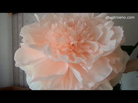 ГИГАНТСКИЕ ростовые цветы. Пион. Часть I / Free Standing Giant Flower | Giant Paper Peony | Part 1 - YouTube