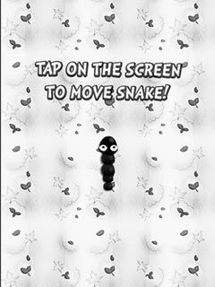 Play Black and white snake Online - FunStopGames