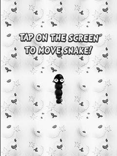 Play Black and white snake Online - FunStopGames