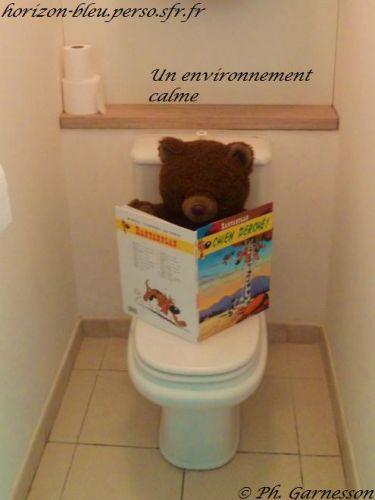 T2, splendide vue mer, parking, piscine: Toilettes indépendantes - France-Voyage.com