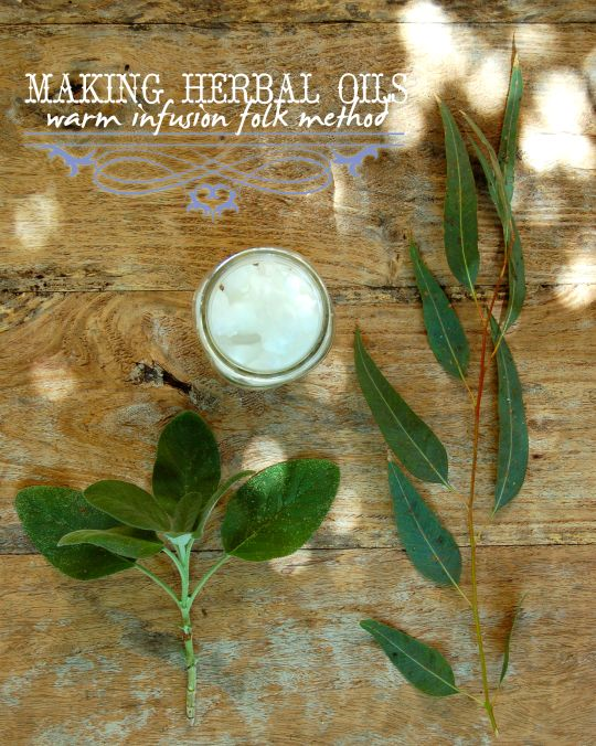How To Make Herbal Oils – Warm Infusion FolkMethod. Tutorial with a recipe for Sage + Eucalyptus Herbal infused Coconut Oil (for aches and pains)