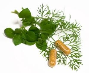 Kinds of Herbal Medicines