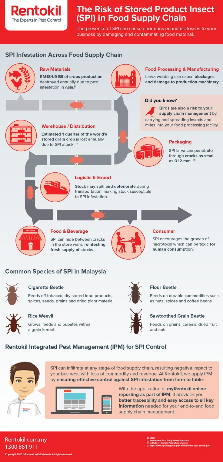 The Risk of Stored Product Insect (SPI) in Food Supply Chain