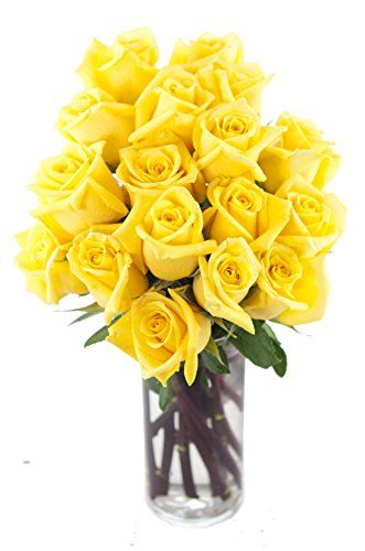 Bouquet-of-Long-Stemmed-Yellow-Roses-Dozen-and-a-Half