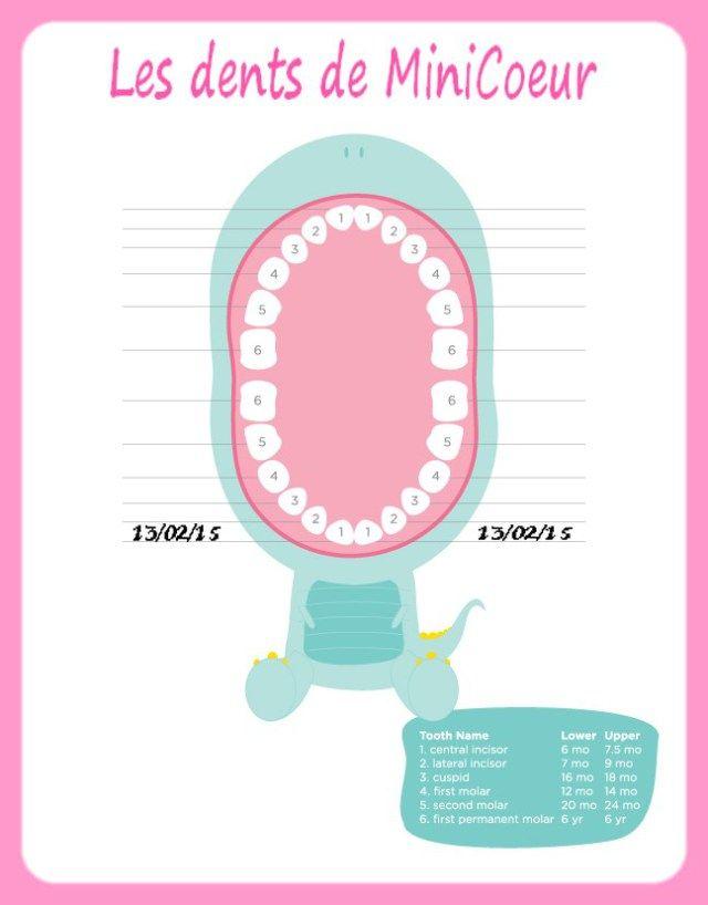 apparition dents lait bébé