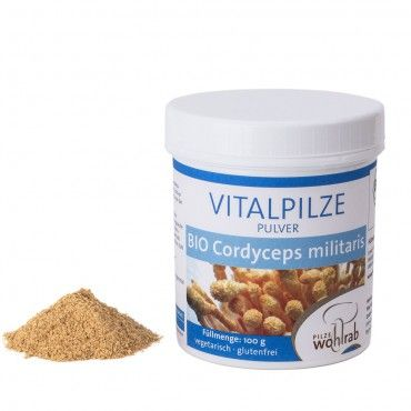 Cordyceps militaris Pulver 100g BIO Vitalpilze - Superfood - Functional Food
