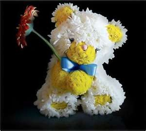 Image Detail for - Flower Animals – the cutest bouquets ever! | Grower Direct Fresh Cut ...